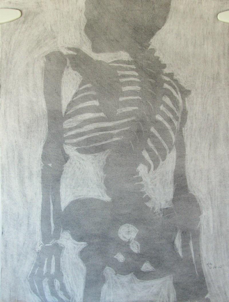 Skeleton Still Life Positive/Negative Space 1