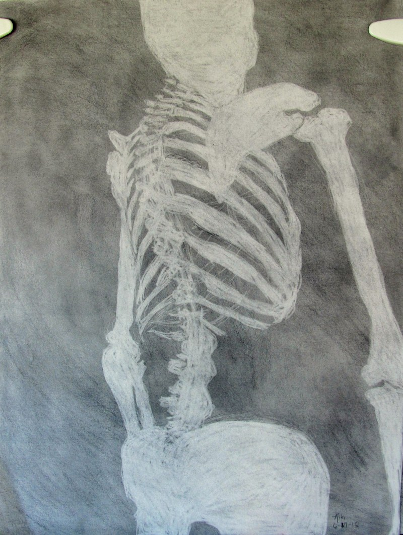 Skeleton Still Life Positive/Negative Space 2